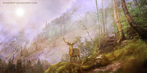 King of the Forest by annewipf