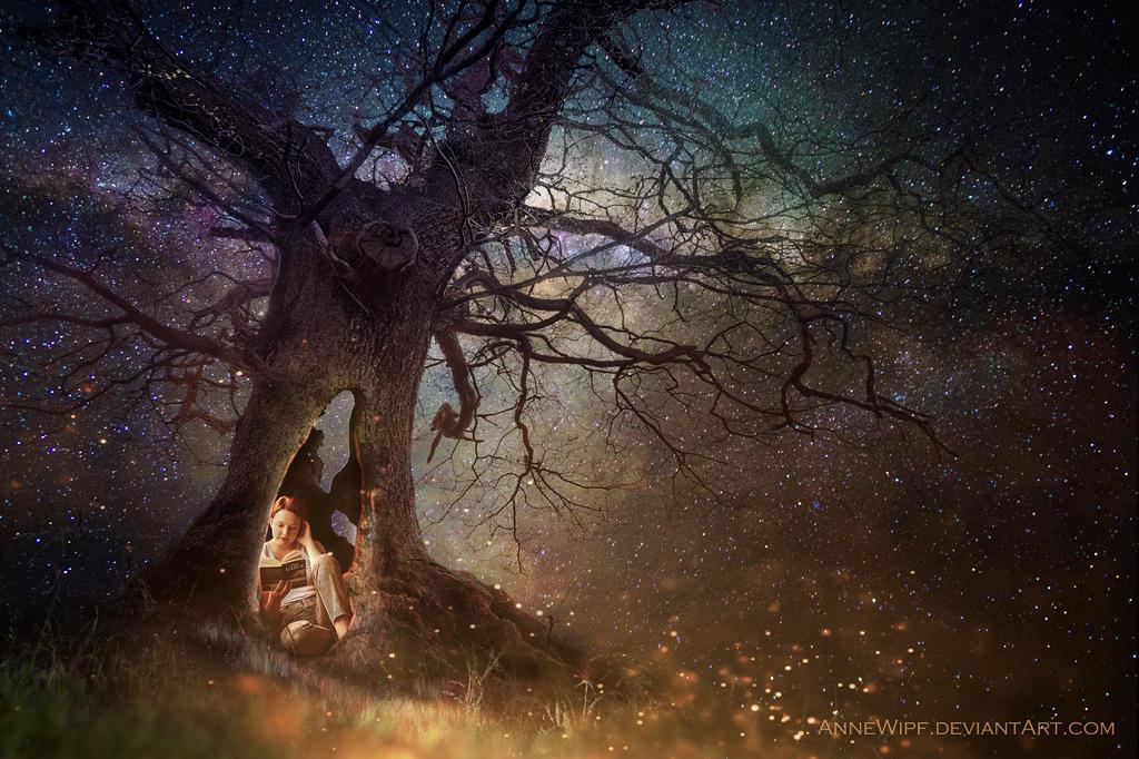 Hollow Tree by annewipf