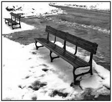 Winter in Delaware Park II by Leida