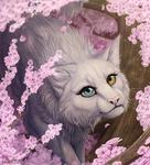 Sakura [comm] by Dachiia