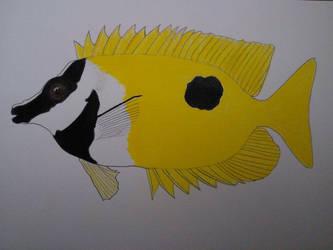 Foxface fish
