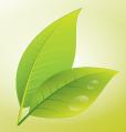 Leaf by rauljoe