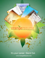 Orange Resume Advertisment by rkaponm