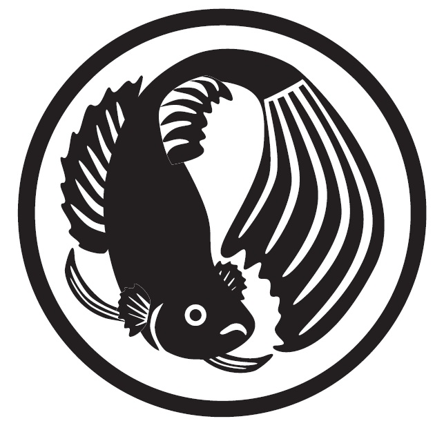 Black and white betta fish by beckiezra on deviantart for Black and white betta fish
