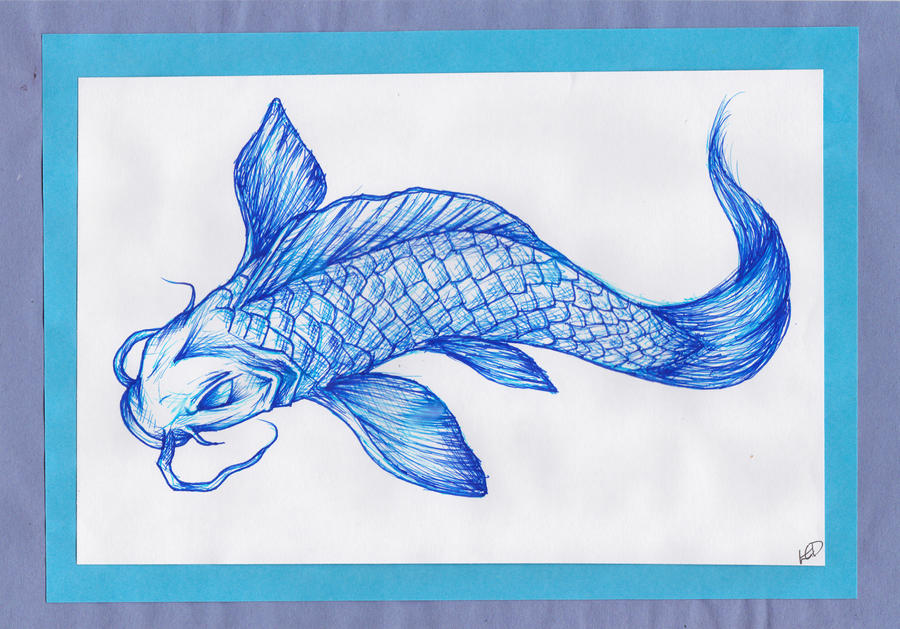 Blue koi fish by kawaiimoogle on deviantart for Purchase koi fish
