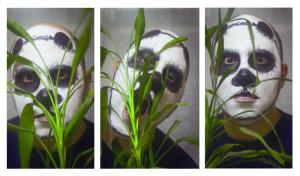 x-Darrell-x's Profile Picture