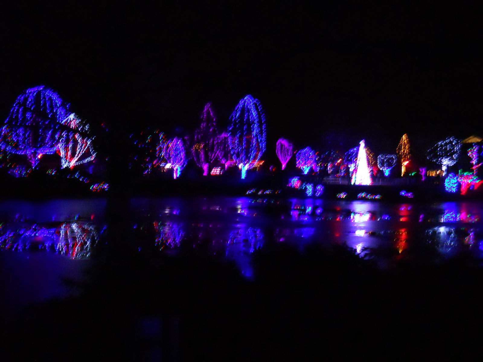 Zoo String Lights : Columbus Zoo lights by SquirePuck on DeviantArt