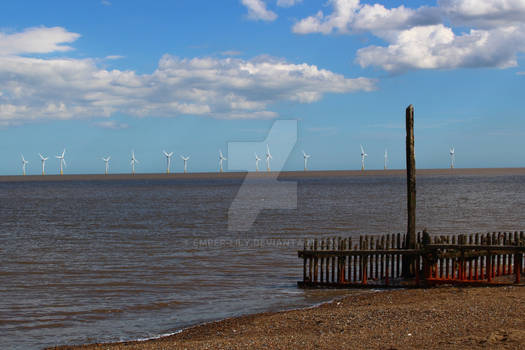 Wind Farm in the Waves