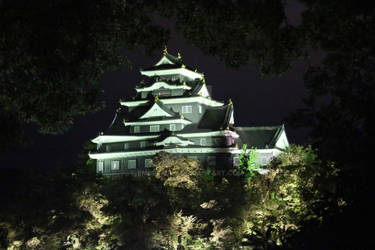 Okayama Castle By Night
