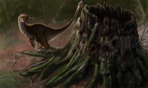 Tiny Raptor Exploring