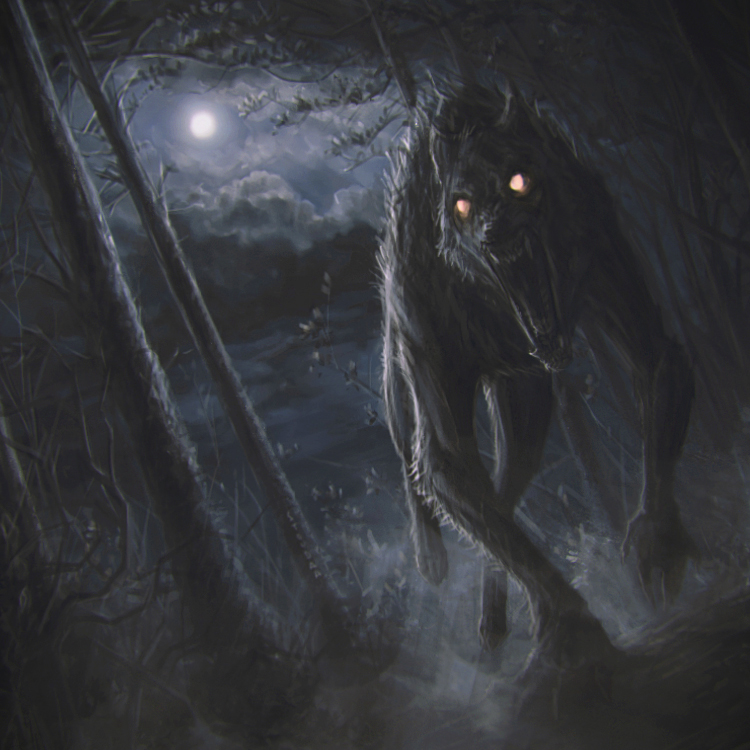 Scary woods photo edit - Werewolf Attack By Stoudaa On Deviantart