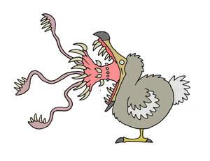 Dodo jaws