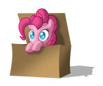 Pinkie in the box