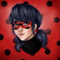 Miraculous: Ladybug by RaccoonMonster