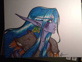 Wow  Night elf by BmxShark