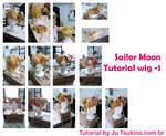 Sailor Moon tutorial wig