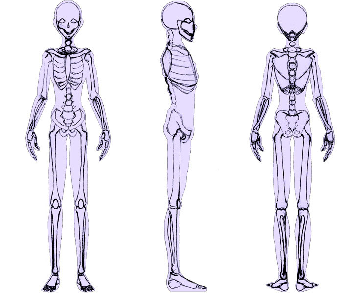 Bishounen Skeleton Silhouette by sunandshadow
