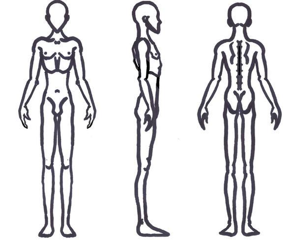 Male Anatomy - Skinny by sunandshadow