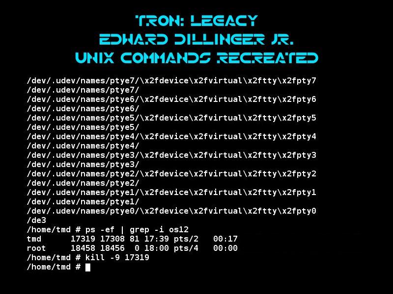 kill command unix