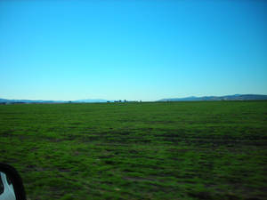 Farm Land 2.