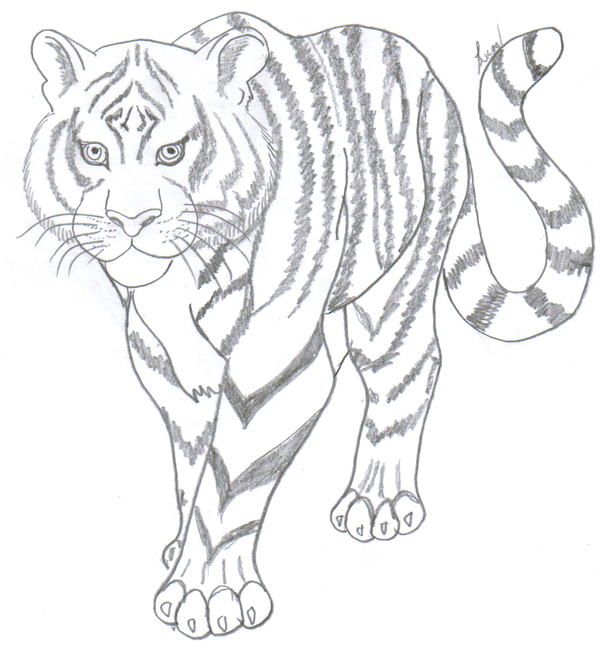 Tiger Lineart By SincerlyYours ...