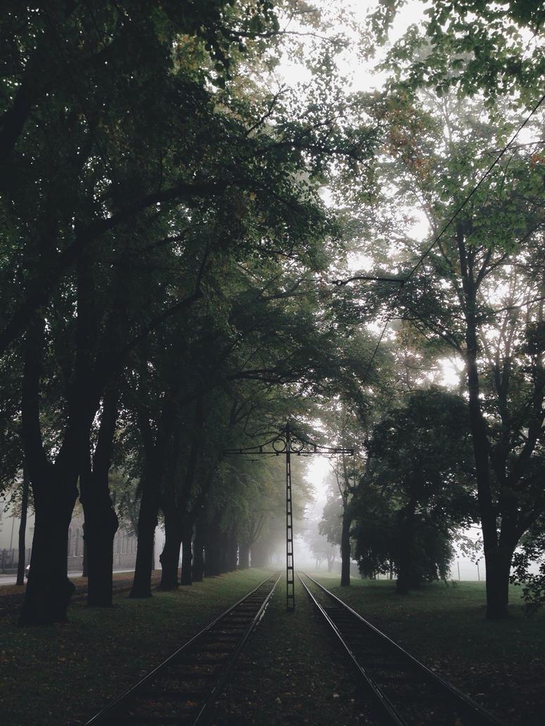 Foggy morning by KarmensPhotos
