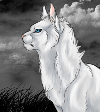 http://img00.deviantart.net/7ad8/i/2013/026/8/8/quick_cloudtail_drawing_by_hero_wuff-d5stzny.png