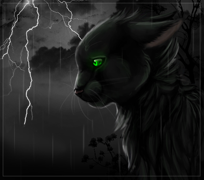 Hollyleaf By Hero Wuff
