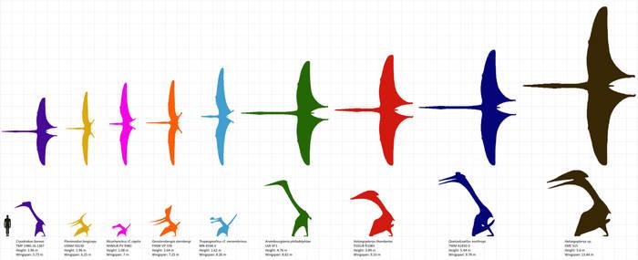 Largest Pterosaurs