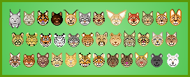 All The Wild Cats by A-R-Allen