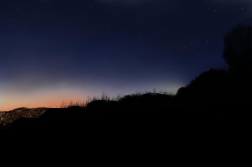 Landscape at Night by artnhaert