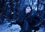 Dark Winter Blues
