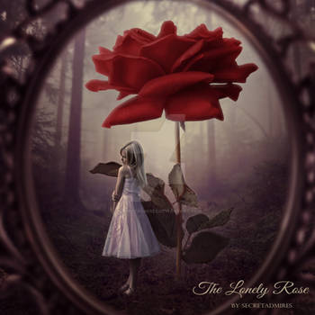 The Lonely Rose by Secretadmires