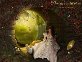 Princess's Secret Place