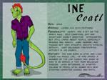 Ine Character Sheet