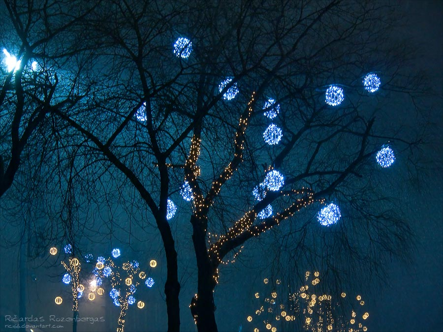 Wintry Fireflies by rici66
