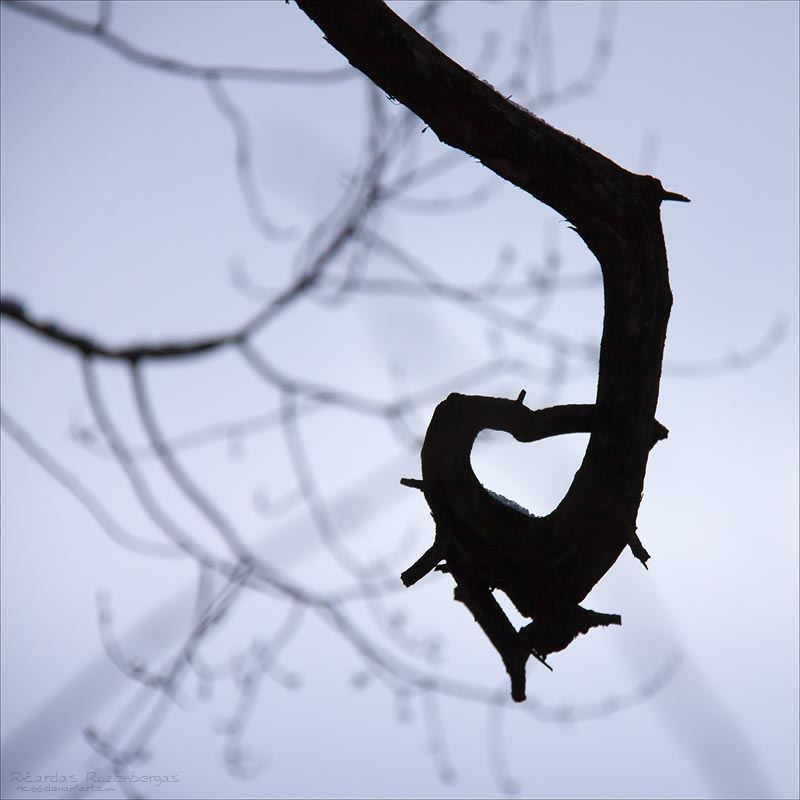 Imperfect Heart by rici66