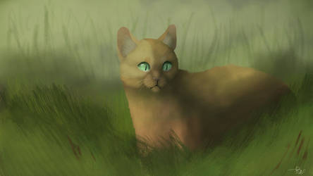 Oh StarClan, what have I done? by HeroWolf95