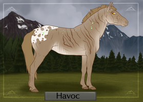N4392 Havoc by Queen-Anarchy