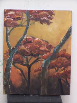 Canopy Trees