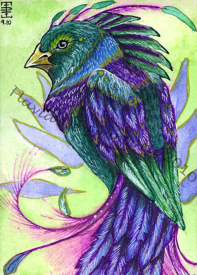 Aceo Ullean by almaticani