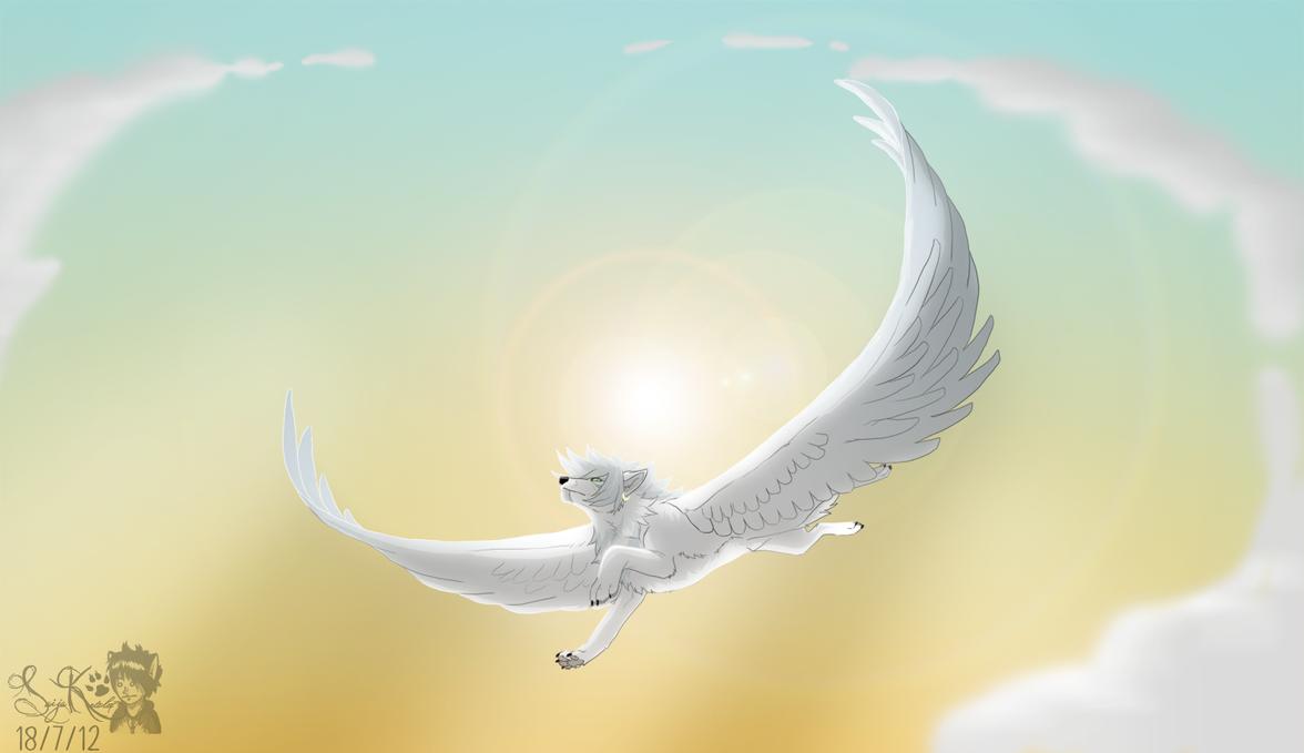 Flight by Saiccu