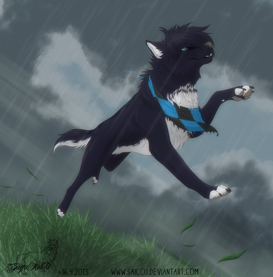 Rain runner by Saiccu