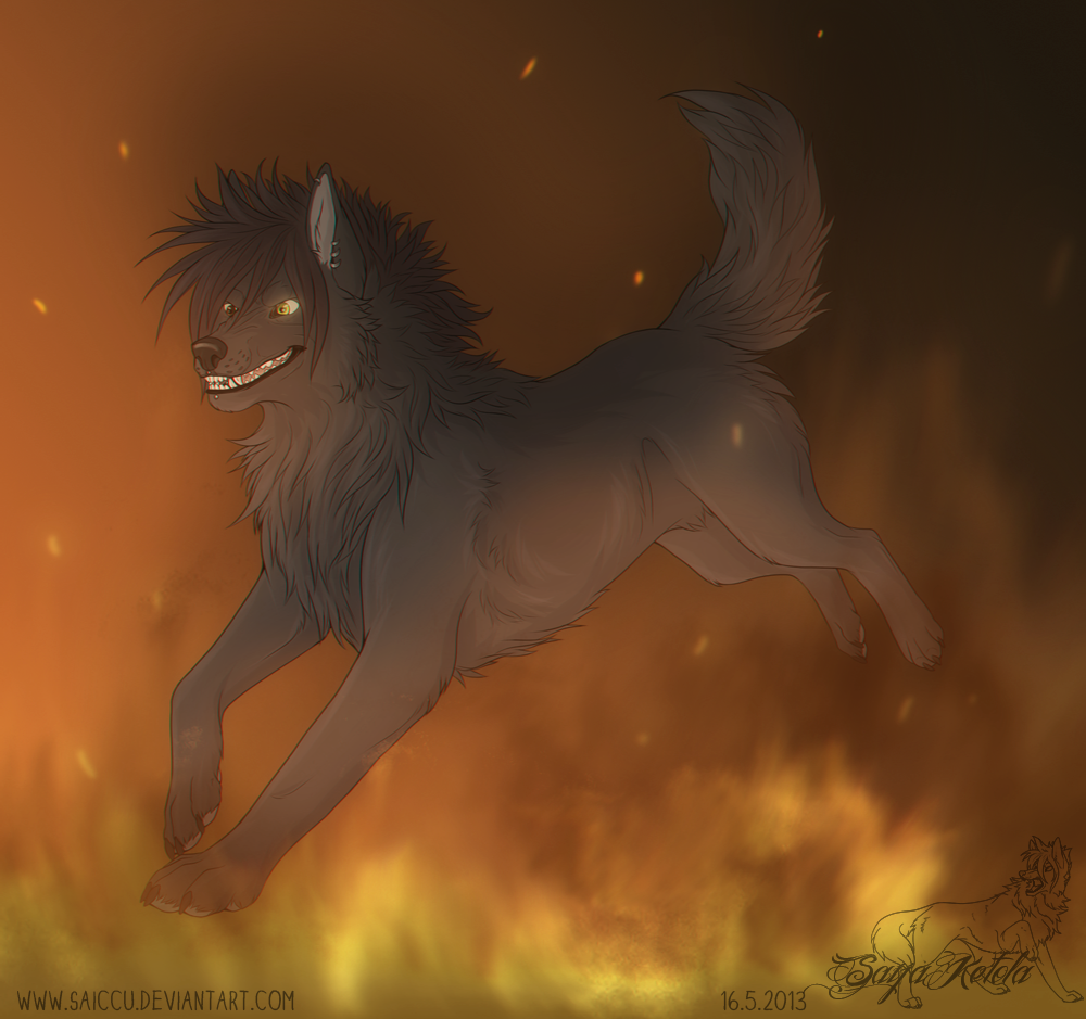 Through the fire by Saiccu