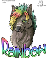 Rainbow by Saiccu
