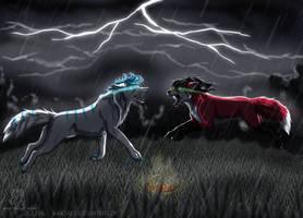 The ultimate fight by Saiccu