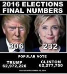 Trump Won the popular vote too