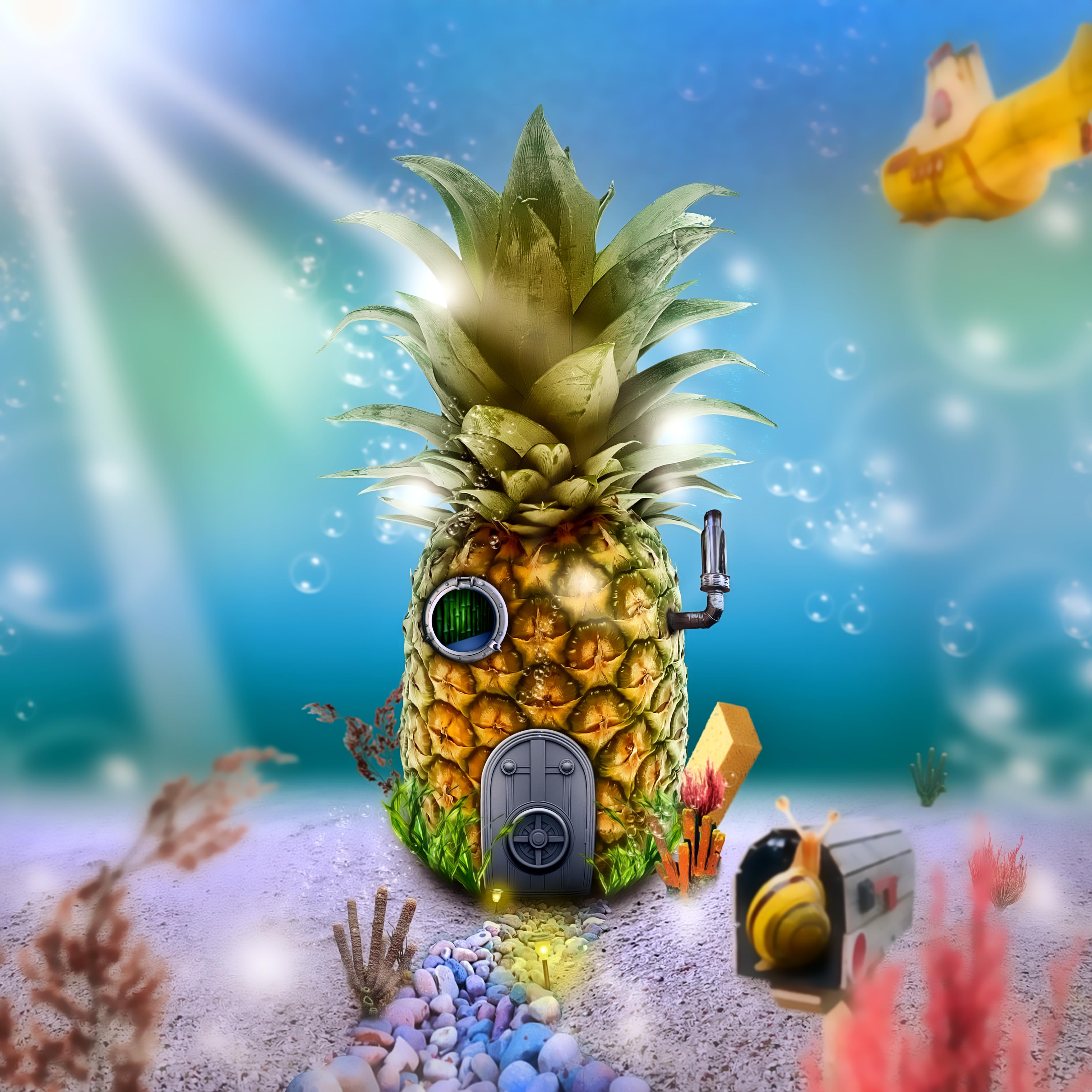 Real Spongebob s House by T-DesainReal Spongebob House