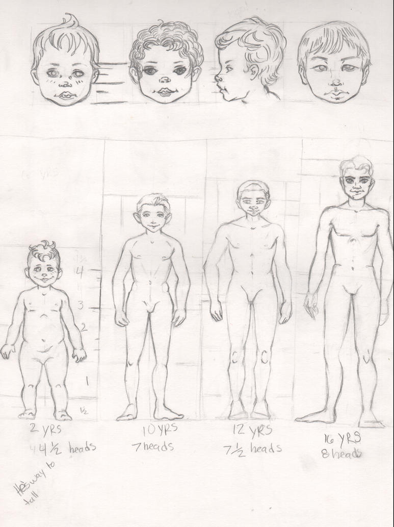 Boy Age Chart by TopplingDominoes