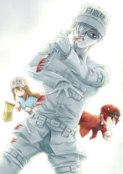 White Blood Cell by ZephX